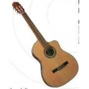 Guitare ELECTRO ACOUSTIQUE pan coupé GIANNINI (GWNFLST) ***PRIX NET***
