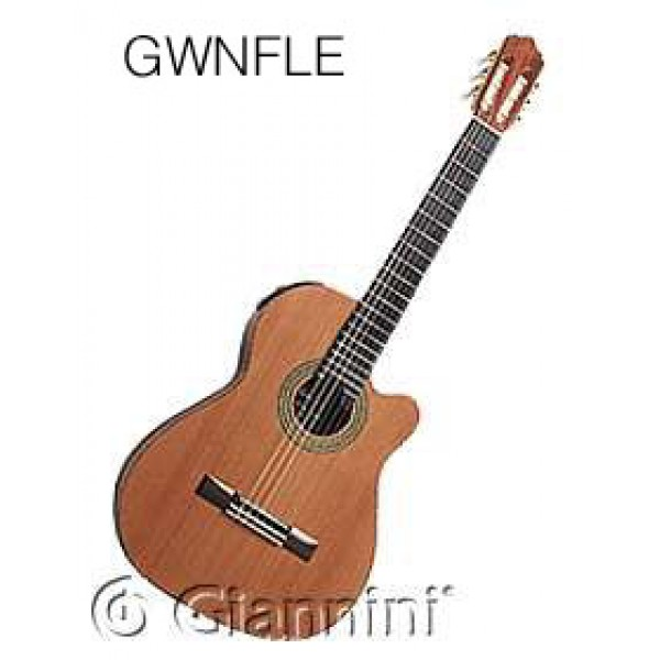 guitare giannini classique lectro acoustique gwnfle. Black Bedroom Furniture Sets. Home Design Ideas